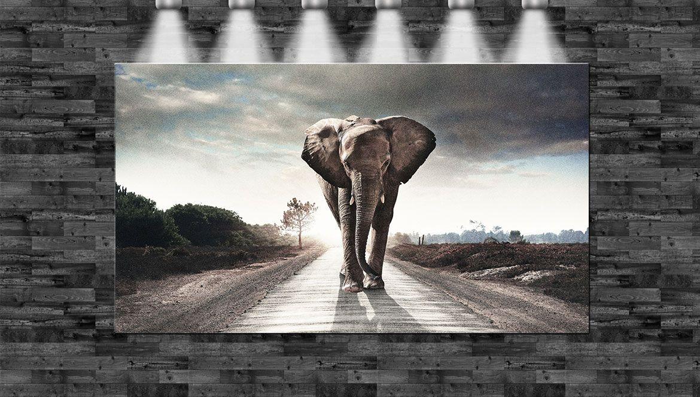 XXL Elefant auf der Straße 160cmx90cm auf Leinwand Keilrahmen Loft ...